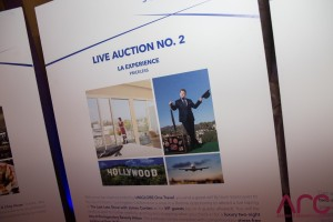 4 AUCTION - ARC 2016 - SOMBILON PHOTOGRAPHY-71
